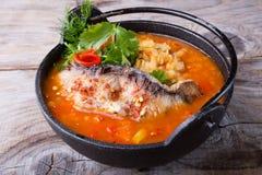 Σούπα φακών με τα ψάρια στοκ εικόνες