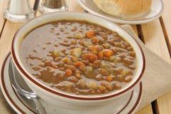 Σούπα φακών Στοκ Εικόνες