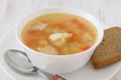 σούπα ψαριών στοκ εικόνες