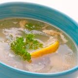 σούπα ψαριών στοκ εικόνα με δικαίωμα ελεύθερης χρήσης