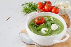 Σούπα Arugula και πουρέ ντοματών στο άσπρο κύπελλο Στοκ Εικόνες