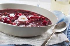 Σούπα Borscht Στοκ εικόνα με δικαίωμα ελεύθερης χρήσης