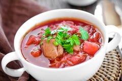 Σούπα Borscht Στοκ εικόνες με δικαίωμα ελεύθερης χρήσης