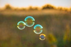 Σούπα burbles στον τομέα ηλιοβασιλέματος στοκ φωτογραφίες με δικαίωμα ελεύθερης χρήσης