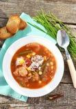 Σούπα Gumbo Στοκ Εικόνες