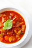 Σούπα Minestrone Στοκ Φωτογραφίες