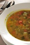 Σούπα pesto Minestrone Στοκ Εικόνα