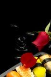 σούσια πιάτων Στοκ φωτογραφία με δικαίωμα ελεύθερης χρήσης