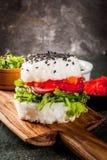 Σούσι-burger, σάντουιτς Στοκ Εικόνες