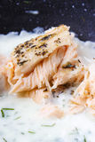 Σολομός στη σάλτσα άνηθου Στοκ Εικόνες