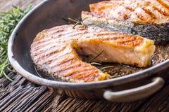 Σολομός Ψημένος στη σχάρα σολομός ψαριών Ψημένη στη σχάρα μπριζόλα σολομών στο ψημένο PA Στοκ Εικόνες