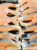 σολομός λωρίδων Στοκ Εικόνες