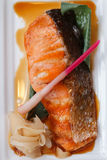 Σολομός Teriyaki: Τηγανισμένος μαριναρισμένος σολομός με τη σάλτσα Teriyaki Στοκ φωτογραφία με δικαίωμα ελεύθερης χρήσης