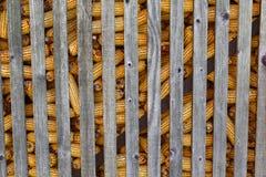 Σπάδικες καλαμποκιού στην αποθήκευση στοκ εικόνα με δικαίωμα ελεύθερης χρήσης