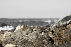 Σπάζοντας κύματα ενάντια στους βράχους σε γραπτό στο εκλεκτικό χρώμα Στοκ Φωτογραφία