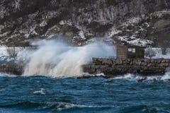 Σπάζοντας κύματα κατά τη διάρκεια της θυελλώδους ημέρας στο Τρόντχαιμ, Νορβηγία στοκ φωτογραφία με δικαίωμα ελεύθερης χρήσης