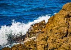 Σπάζοντας κύματα στην ακτή του ίχνους ενυδρίδων στον Ινδικό Ωκεανό Στοκ φωτογραφίες με δικαίωμα ελεύθερης χρήσης