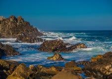 Σπάζοντας κύματα στην ακτή του ίχνους ενυδρίδων στον Ινδικό Ωκεανό Στοκ Εικόνες