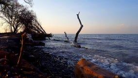 Σπάζοντας κύματα στο όμορφο ράντισμα ακτών παραλιών προς τη κάμερα το πρωί Πρωινή ακτή διακοπών με τον παφλασμό νερού φιλμ μικρού μήκους