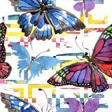 Σπάνιο άγριο έντομο πεταλούδων σε ένα ύφος watercolor Άνευ ραφής πρότυπο ανασκόπησης Σύσταση τυπωμένων υλών ταπετσαριών υφάσματος Στοκ Εικόνες