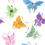 Σπάνιο άγριο έντομο πεταλούδων σε ένα ύφος watercolor Άνευ ραφής πρότυπο ανασκόπησης Σύσταση τυπωμένων υλών ταπετσαριών υφάσματος Στοκ Εικόνα