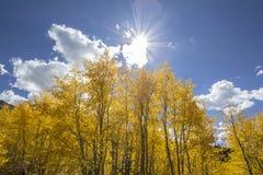 Σπάσιμο ήλιων φθινοπώρου στοκ φωτογραφία με δικαίωμα ελεύθερης χρήσης