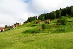 Σπίτια βουνών στο οροπέδιο Ayder Στοκ εικόνες με δικαίωμα ελεύθερης χρήσης
