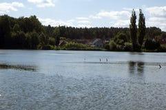 σπίτια κοντά στη λίμνη Στοκ Εικόνα