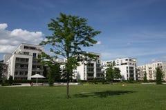 σπίτια κοντά στο νέο πάρκο Στοκ εικόνες με δικαίωμα ελεύθερης χρήσης