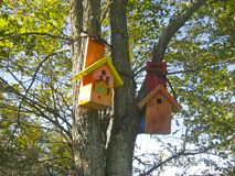 Σπίτια πουλιών Στοκ εικόνα με δικαίωμα ελεύθερης χρήσης