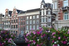 σπίτια του Άμστερνταμ στοκ εικόνα με δικαίωμα ελεύθερης χρήσης