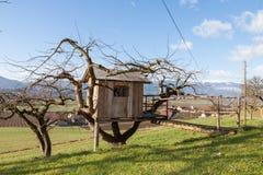 Σπίτι δέντρων - εξοχικό σπίτι - αγρόκτημα Στοκ εικόνα με δικαίωμα ελεύθερης χρήσης
