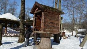 Σπίτι δέντρων διασκέδασης ζεύγους απόθεμα βίντεο