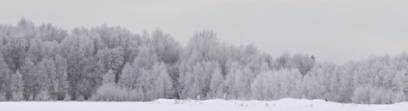 σπίτι αλεπούδων το κόκκινό  Στοκ Εικόνες