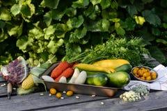 Σπίτι λαχανικών Στοκ Εικόνες