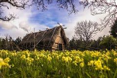 Σπίτι Βίκινγκ στη Gotland, Σουηδία Στοκ Εικόνα