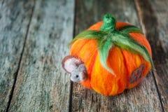 Σπίτι κολοκύθας Felted για ένα χαριτωμένο ποντίκι βελούδου Στοκ φωτογραφίες με δικαίωμα ελεύθερης χρήσης