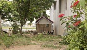 Σπίτι κοτόπουλου Στοκ Φωτογραφίες