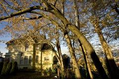 σπίτι λευκών φελλού βικτοριανό Στοκ εικόνες με δικαίωμα ελεύθερης χρήσης