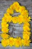 σπίτι λουλουδιών Στοκ φωτογραφίες με δικαίωμα ελεύθερης χρήσης