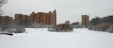 Σπίτι, πάρκο, χειμώνας, ορίζοντας Στοκ εικόνα με δικαίωμα ελεύθερης χρήσης