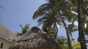 Σπίτι παραλιών thatched-στεγών 4K απόθεμα βίντεο