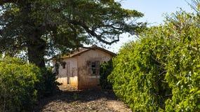 Σπίτι πολύ απλό και που φροντίζεται κακώς για ένα φτωχό αγρόκτημα στη Βραζιλία στοκ φωτογραφία