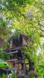 Σπίτι πουλιών και ένα σπίτι δέντρων Στοκ εικόνα με δικαίωμα ελεύθερης χρήσης