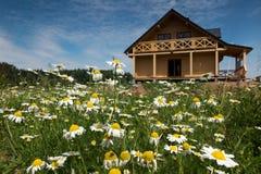Σπίτι που περιβάλλεται ξύλινο από τις άγρια περιοχές λουλουδιών Στοκ Φωτογραφία