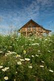 Σπίτι που περιβάλλεται ξύλινο από τις άγρια περιοχές λουλουδιών Στοκ Εικόνα