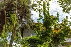 Σπίτι που περιβάλλεται όμορφο από τη βλάστηση Στοκ Εικόνες