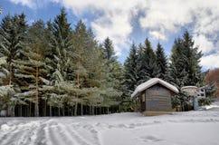Σπίτι σκι βουνών Στοκ Φωτογραφία