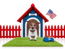 Σπίτι σκυλιών Στοκ Εικόνα