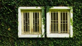 Σπίτι στην επαρχία με τον τοίχο εγκαταστάσεων Coatbuttons μεταξύ του πράσινου natu Στοκ Εικόνες